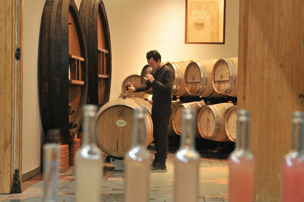 vin vignoble château Berne week-end